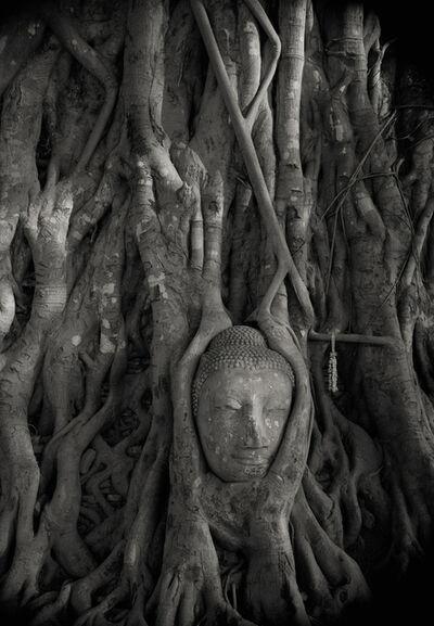 Kenro Izu, 'Ayutthaya #36, Thailand', 1998