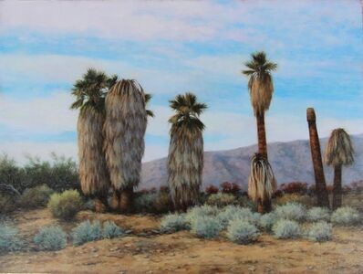 Darlene Campbell, '29 Palms #4', 2018