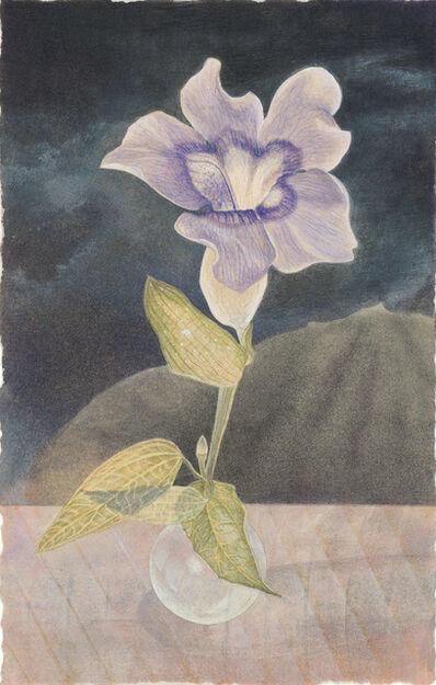 Christina Haglid, 'Blue Thunbergia', 2009