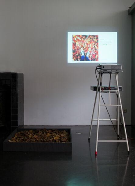 Hester van Tongerlo, '#autumnleaves - installation', 2016