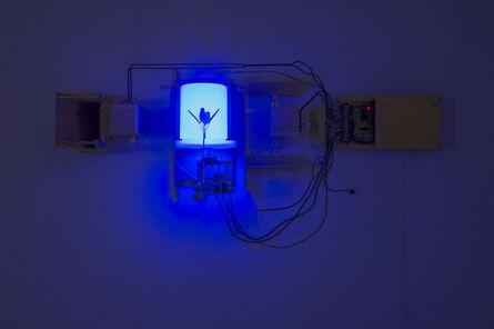 Jeff Shore & Jon Fisher, 'Blue Flower', 2011