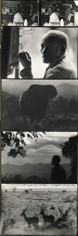 Peter Beard, 'Kamante Last Photo', 1984