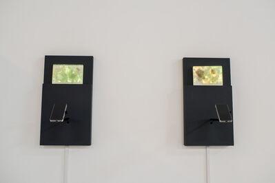 Camille Utterback, 'Radiant Cache (Eucalyptus), Radiant Cache (Palm', 2017