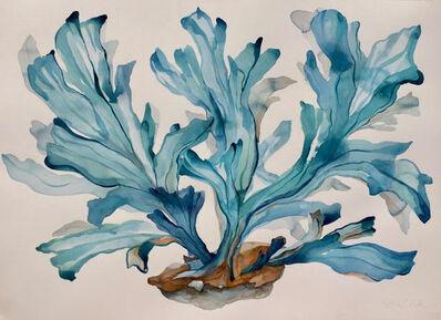 Idoline Duke, 'Blue Coral Imagined', 2019