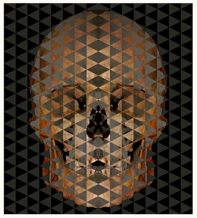 Fabián Ugalde, 'Perfect Death', 2016