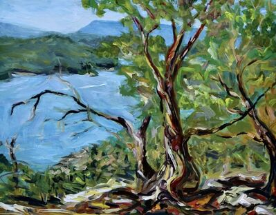 Terrill Welch, 'Late September Sun on Vulture Ridge Mayne Island BC', 2014-2016