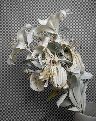 Stephanie Syjuco, 'Whiteout (Krylon ColorMaster Gloss White on White Oriental Lilies)', 2019