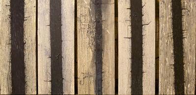 Hugo Fontela, 'Trees'