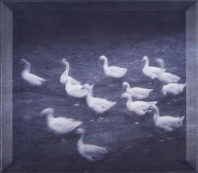 Lee Yanor, 'Untitled', .