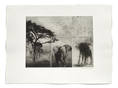 Frédéric Desaulniers, 'Fenêtre sur l'Afrique', 2007