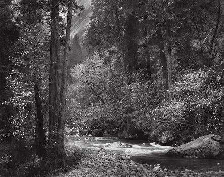 Ansel Adams, 'Tenaya Creek, Spring Rain, Yosemite National Park', 1948