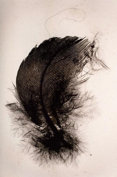 Francisco Tropa, 'Penas (Feather)', 2010