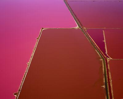 David Burdeny, 'Pink Pools Hut Lagoon, Western Australia', 2015