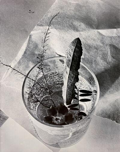 Grete Stern, 'Glass with Leaf', 1931