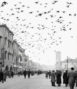 Elio Ciol, 'Mezzogiorno a Chioggia - Chioggia', 1959