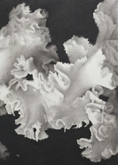 Luo Mingjun, 'Blossom', 2017
