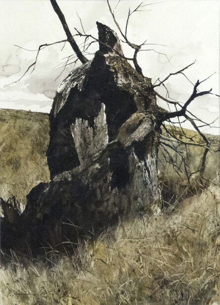 Gregory Sumida, 'Hollow Tree, Hollow Trunk', 1972