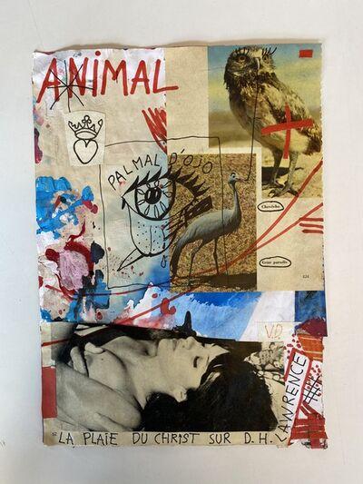 Vincent Delbrouck, 'animal', 2020