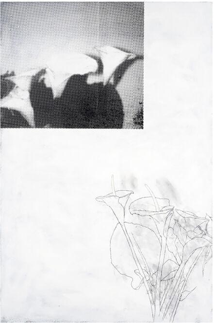 Julião Sarmento, 'Plant, Plant, Black, White', 2009