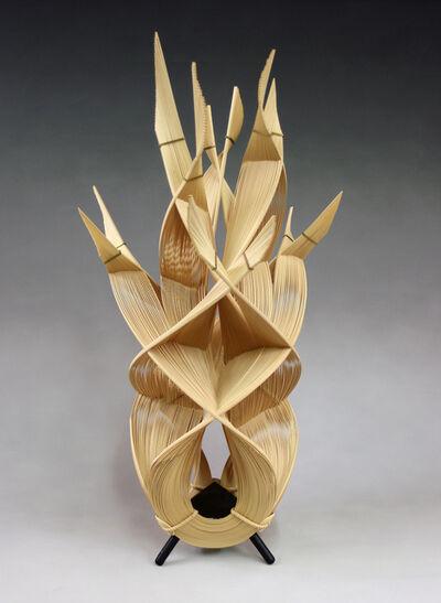 Fujitsuka Shosei, 'Fire', 2010