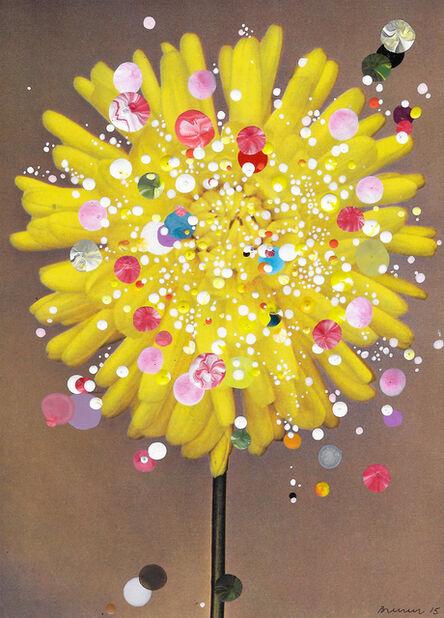 Sebastiaan Bremer, 'Semi-Cactus Dahlia Gold Flake', 2015