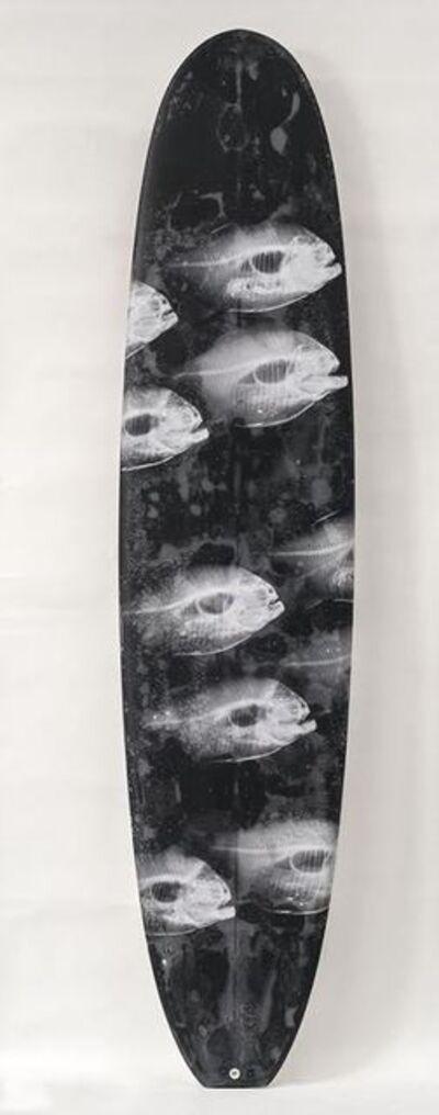Steve Miller, 'Surfboards, Ray White Piranhas Black Bubble Board ', 2016