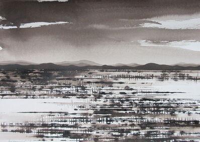 David Middlebrook, 'Desert Grassland', 2016-2017