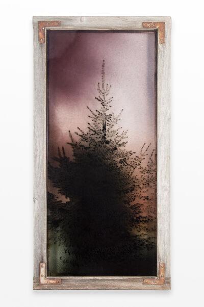 Augustas Serapinas, 'Spruce in Matūkai', 2018