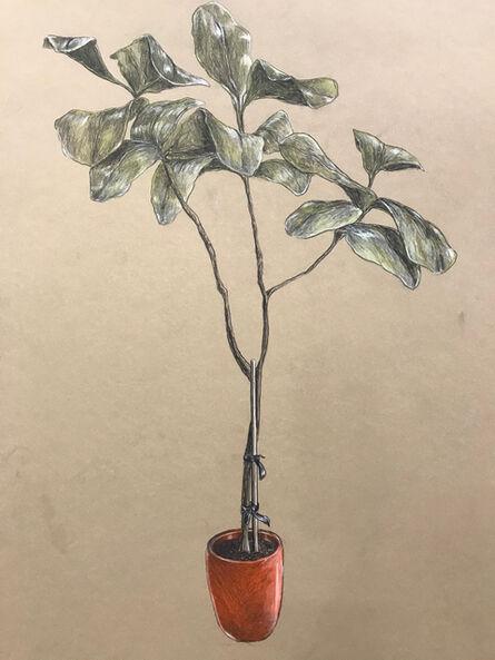 Robert Pruitt, 'Tree Study', 2020