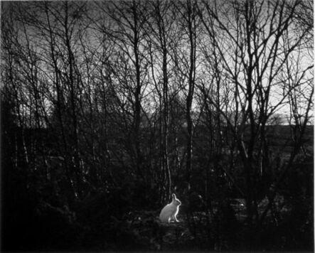 Pentti Sammallahti, 'Signilskar, Finland', 1974