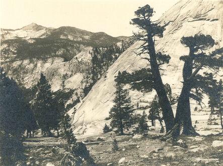 Ansel Adams, 'Sierra Junipers, Upper Merced Basin, Yosemite Valley', c. 1927