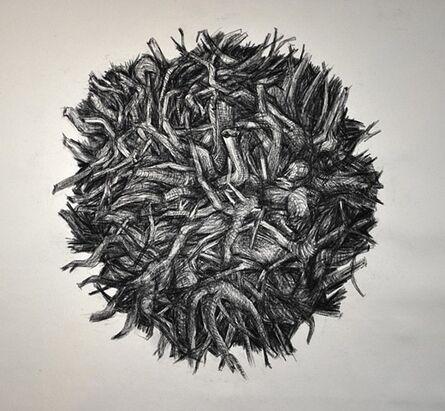 Iain Hugh Machell, 'Root Ball 1', 2014
