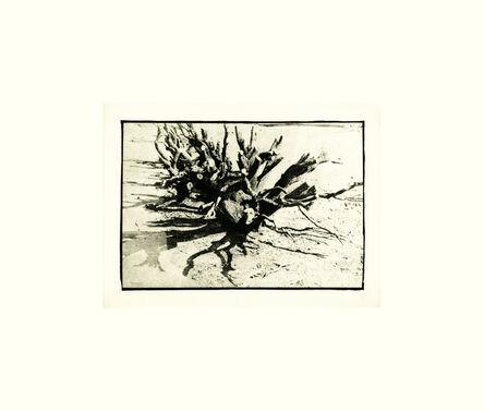 David Lynch, 'Untitled II', 2000