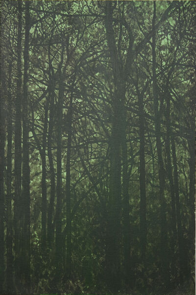 Stephen March, 'Untitled (Forest)', 2014