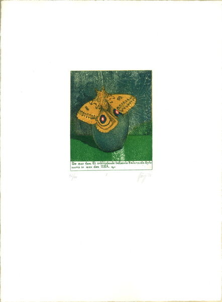 Maurilio Minuzzi, 'Von Raupen und Schmetterlingen, Frei erfundene Stadien der Metamorphose (From Caterpillars to Butterflies, The Fictitious Stages of Metamorphosis) ', 1976