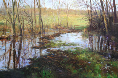 Thomas McNickle, 'A BREAK IN THE DAM (PENNSY MARSH)', 2007