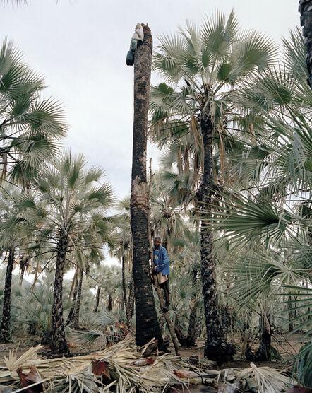 Kyle Weeks, 'MARAPUHO TJIPOSA', 2015