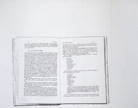 Allen Ruppersberg, 'Untitled (The Book as Object)', 1976