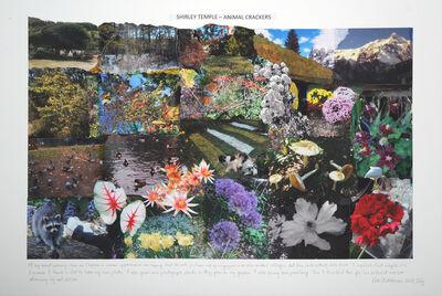 Peter Arthur Hutchinson, 'Shirley Temple', 2014