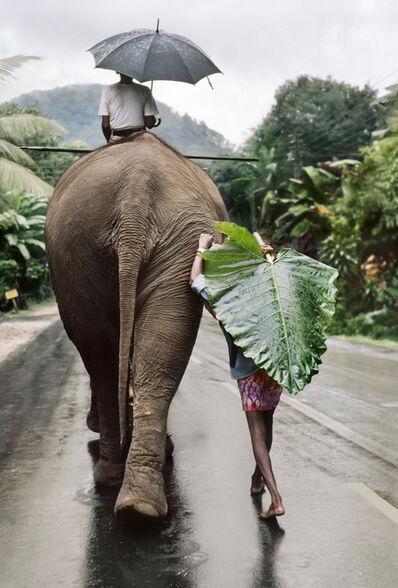Steve McCurry, 'Young Man Walks Behind Elephant, Srilanka', 1995
