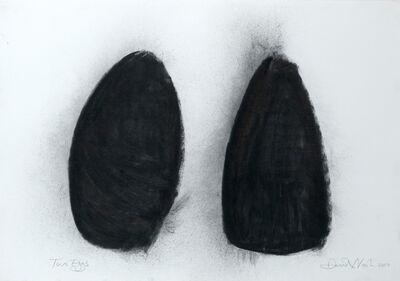 David Nash, 'Two Eggs', 2003