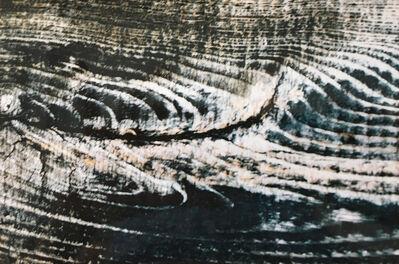 Renata Padovan, 'Untitled', 2001