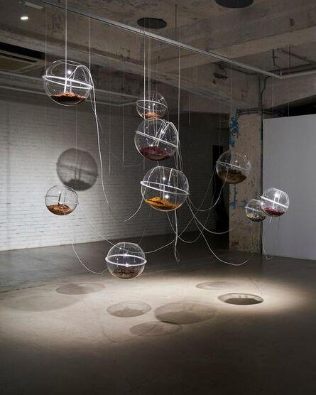 Wing Po So, 'Cicada Sound Collector', 2020