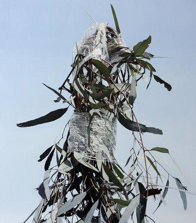 Juan Ford, 'Long Time Coming', 2009