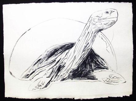 Andy Warhol, 'Vanishing Animals - Galapagos Tortoise', 1986