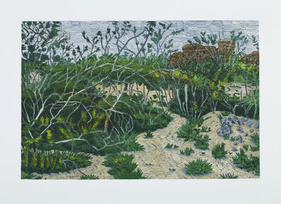 Rodrigo Andrade, 'Untitled 02 from Mato, Onda e Abstrato (Forest, Wave and Abstract)', 2015