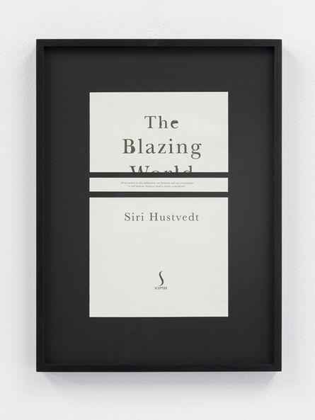 Meriç Algün Ringborg, 'Disclaimers (Siri Hustvedt: The Blazing World)', 2014