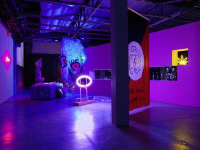 Chen Tianzhuo 陈天灼, 'Installation view of Tianzhuo Chen', 2015