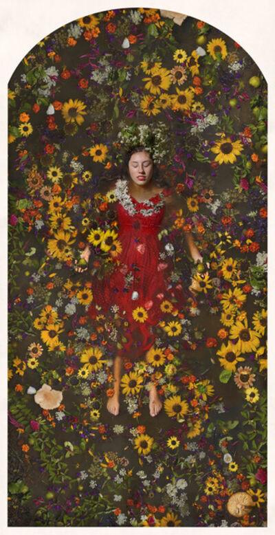 Kahn & Selesnick, 'Hazel, Sunflower, Salamander'