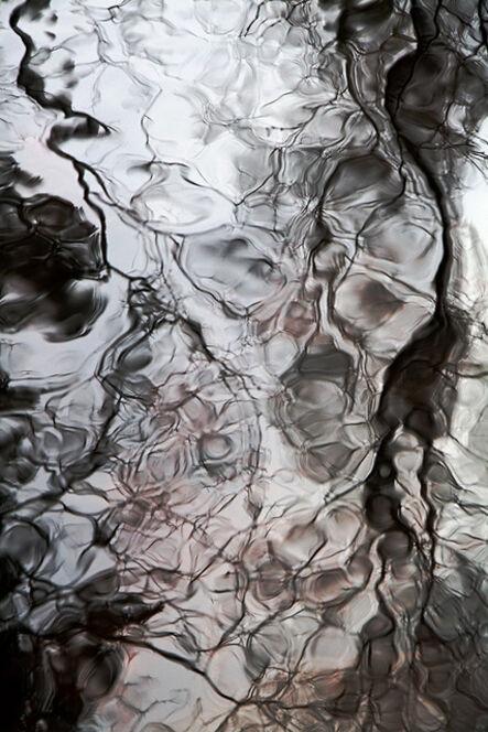 Anne Walker, 'A Tree's View of Itself 1', 2015